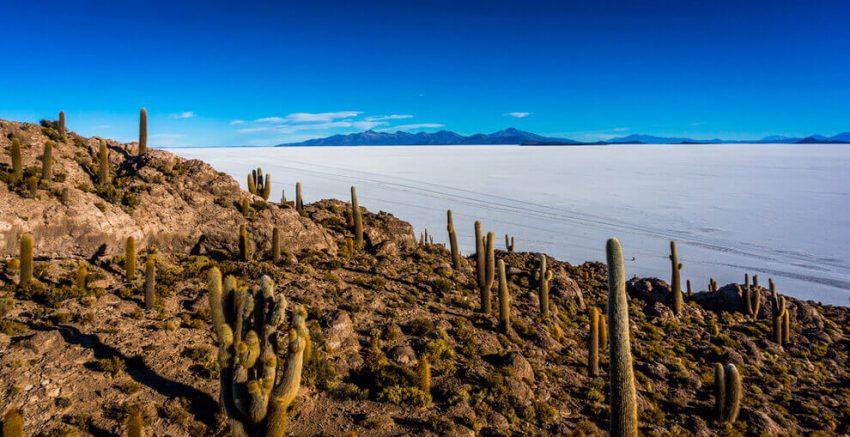 Fish island, Uyuni salt flats