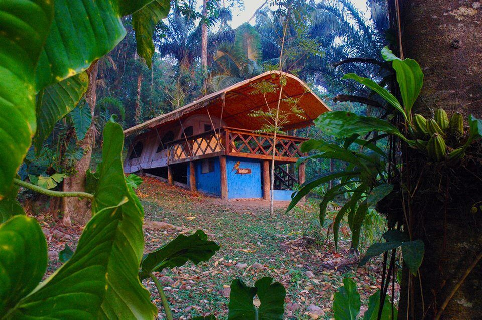 Cabin Mataracu Tent Camp Amboro National Park