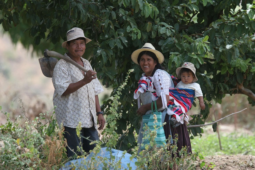 Quechua family
