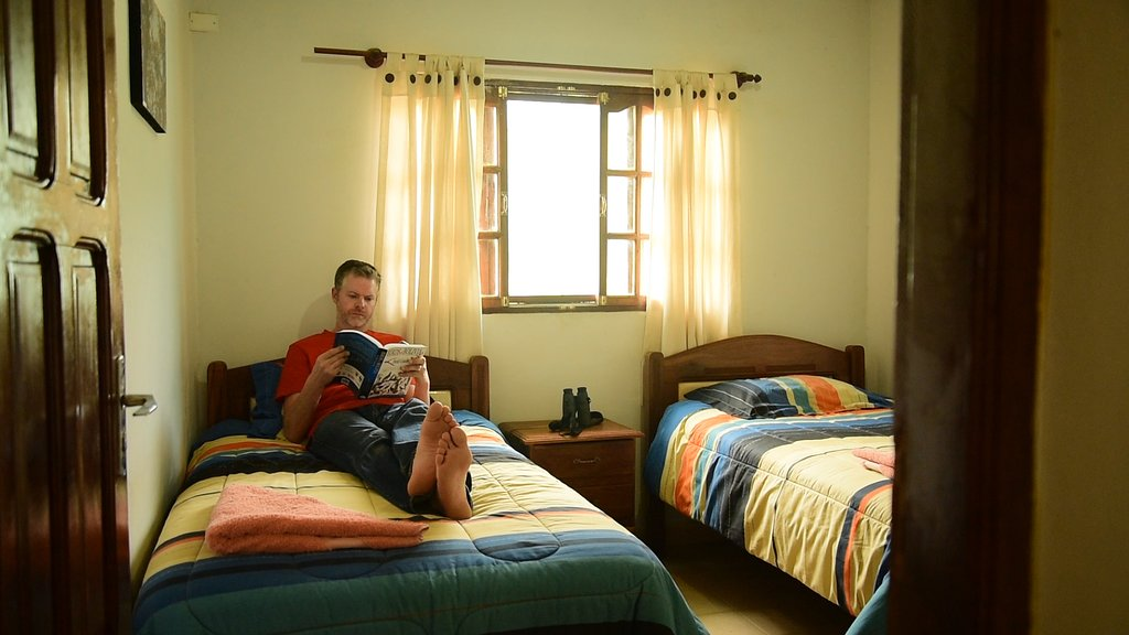 Red-Fronted macaw lodge double room