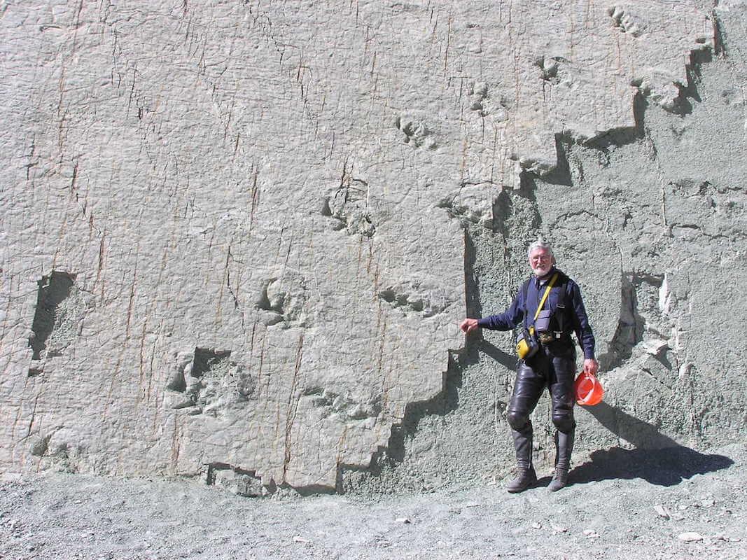 Dinosaur tracks-cretaceous titanosaurus, Cal Orcko wall - Sucre, Bolivia