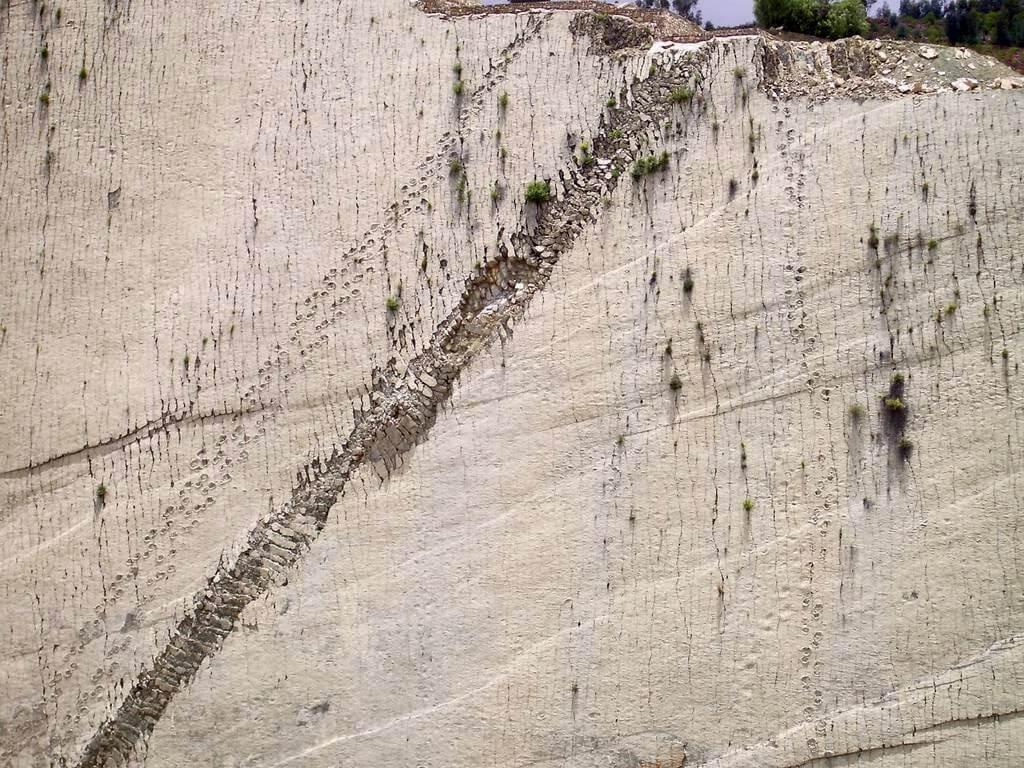 Dinosaur walk footprints, Cal Orcko wall - Sucre, Bolivia